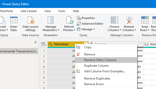 Remove Other Columns in the Power Query Editor